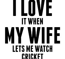 When My Wife Lets Me Watch Cricket by kwg2200