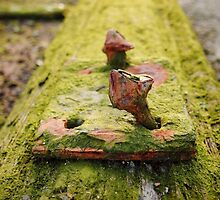 rusted bolt for rails by novopics