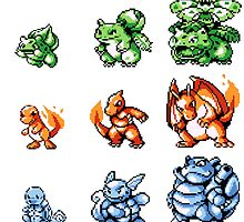 Pokemon Red and Blue - First 9 Pokemon by eddytkirk