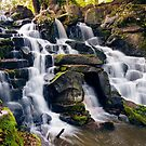 The Cascades, Virginia Water by Steve  Liptrot