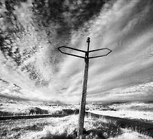 Road to Nowhere by Hywel Harris
