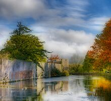 The Moat by Ann Garrett