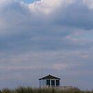 Blue lookout by Jennifer Bradford