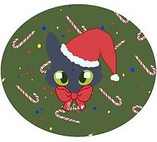 Toothless - Holiday special by Sofua