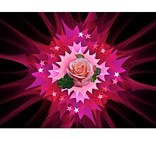 One Pink Rose to Go Photographic Print