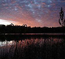 Sunset Wisconsin Reeds by boothy76
