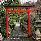 Tori gate by Robyn Lakeman