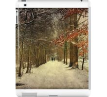 Enchanting Dutch Winter Landscape iPad Case/Skin