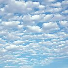 Beautiful fluffy clouds. by Stacey Lynn Payne