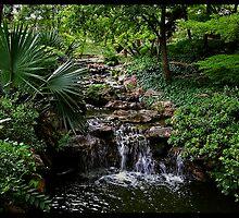 Japanese Garden Ft. Worth, Tx by Jamaboop