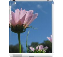 Saturday morning at the Farm iPad Case/Skin