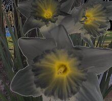 Dark color flower  by katiebug1025