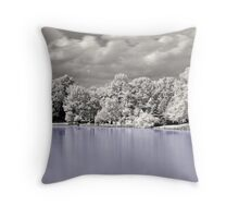 House On The Lake  Throw Pillow