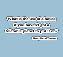 Whats the use? Thoreau  by Tammy Soulliere