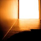 Skylight by Ani Corless