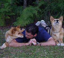 Dingoes & me by Jordan N Clarke