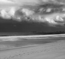 Narrabeen Storm by Matt  Lauder