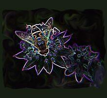 Drone Flower B by VikingVisual