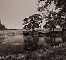 The Water Hole by Craig Hender