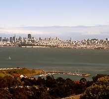 San Francisco Skyline by Robin Fortin IPA