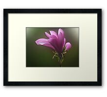 Perfect World Framed Print