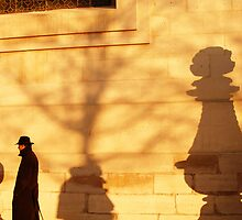 Spy by Jean-François Dupuis