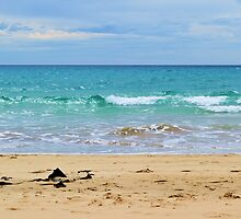 Apollo Bay 01 by a-and-j