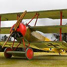 Fokker Dr1 by Kofoed