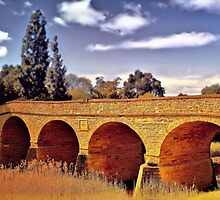 Richmond Bridge 2 by wallarooimages