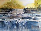 Aysgarth Falls by Val Spayne