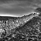 Irish Stone Wall by Kevin Hart