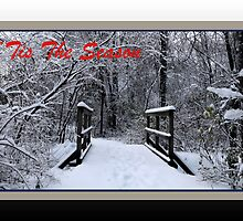 'Tis The Season Ice Bridge (holiday card) by TerriRiver