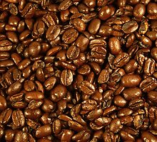 Coffee Beans by Elizabeth  Lilja