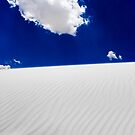 Windswept Dunes by Greg Riegler