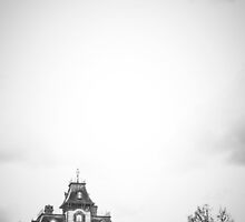 Phantom Manor En Noir Et Blanc by Austen Risolvato