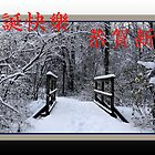 Chinese holiday greeting (Pro Bono holiday card) by TerriRiver