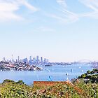 A View From Rose Bay by John Karamanos