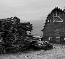 The Barn by Nikki Trexel