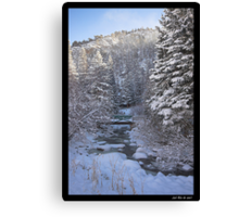 Colorado Winter Canvas Print