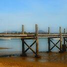Squeaking Point Pier, Tasmania by Jodi Turner