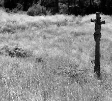 Ancient cross in a field near Finisterre by Richard McCaig