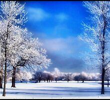 Winter Wonderland by minnielee
