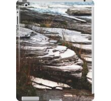 Twenty Years Later iPad Case/Skin