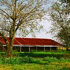 Country Life in Texas by James Jackson III