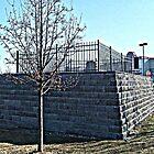 Mary Ellis grave, Loews Theatre parking lot, New Brunswick NJ (read description for the history) by Jane Neill-Hancock
