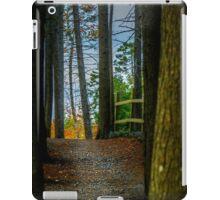 Hemlock Ravine Park iPad Case/Skin