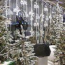 A Christmas Window by Fara