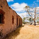 I love a sun burnt country 1 by DavidsArt