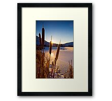 Frozen Cattail Sunrise Framed Print