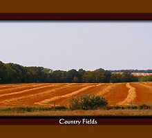Country Fields by Madeline M  Allen